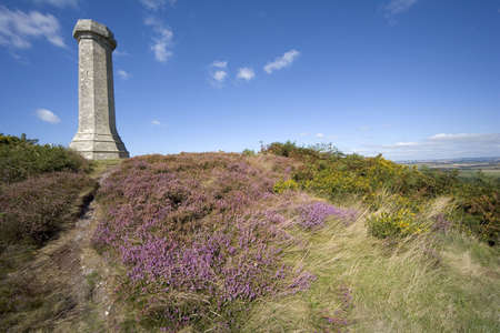 hardy: views from the thomas hardy monument dorset england