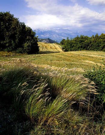 french alps farmland crops agriculture agricultural landscape farming farms photo