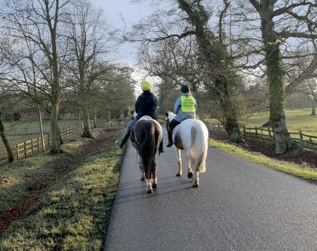 horses country lane