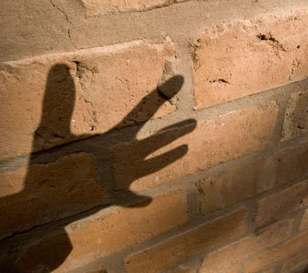 stealth: shadow of hand on brick wall