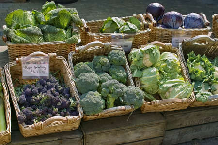 open air: vegetables for sale in open air farmers market