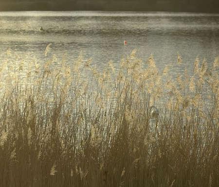lake Stock Photo - 921163