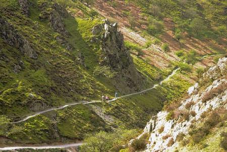 mill valley: walker stream footpath uphill carding mill valley shropshire england uk