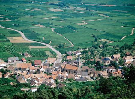 vins: route des vins alsace france