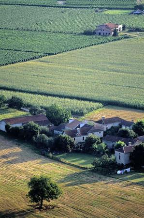 pyrenees: vineyards farmland midi pyrenees lot valley near cahors Stock Photo
