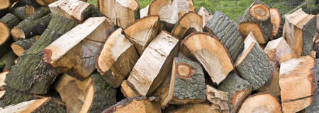 Background of stacked logs photo