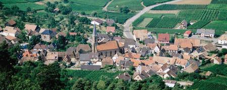 des vins: route des vins alsace france