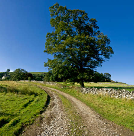 derbyshire: upper dovedale valley peak district national park derbyshire staffordshire england uk