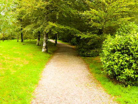 bodmin: country house and stately home of lanhydrock bodmin cornwall england uk path through woodland Stock Photo