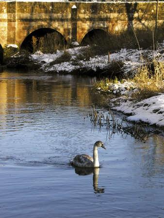 warwickshire: warwickshire river blythe dukes bridge