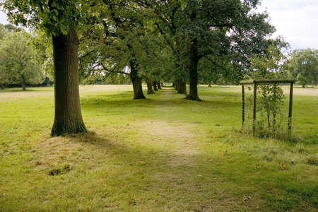packwood: heart of england way footpath the avenue packwood house warwickshire midlands england uk Stock Photo