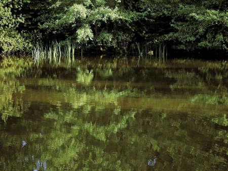 enfield: Enfield London Park Park trent paese il giardino d'acqua