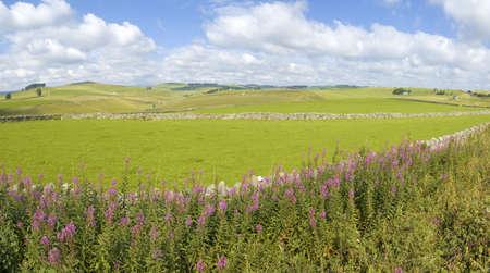 disused: vista desde el sendero cycleway y tissington sendero a lo largo de la l�nea de ferrocarril en desuso parque nacional Peak District Derbyshire Inglaterra Reino Unido