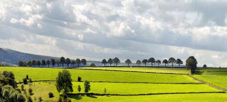 cycleway: Vista dal sentiero Tissington pista ciclabile e percorso pedonale lungo la linea ferroviaria in disuso Peak District National Park uk Derbyshire England Archivio Fotografico