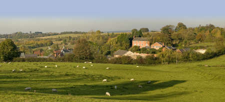 tardebigge: terreni agricoli tardebigge villaggio di pecore, Worcestershire, England, UK