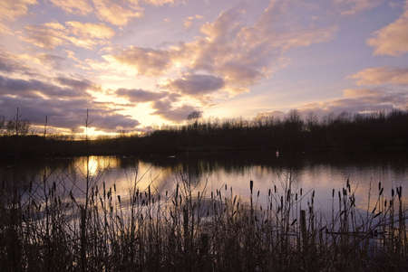 redditch: arrow valley lake country park redditch