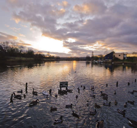 redditch: valley of the river arrow lake country park redditch Stock Photo