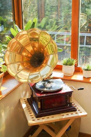 wintergarten: Wintergarten Tabellen St�hle Pflanzen Zimmer im Haus neben Garten