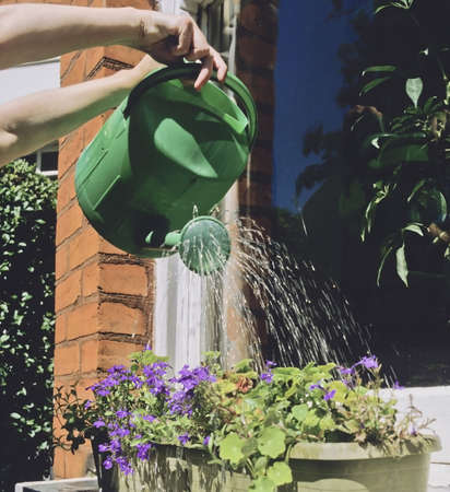 watering plants watering can baskets on window sill Stock Photo