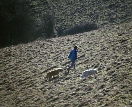 en mont�e: femme chiens marche vers