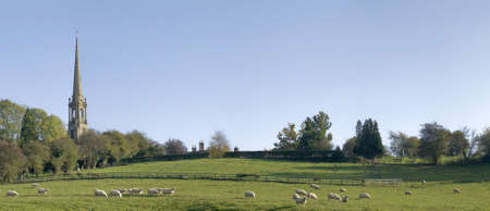 tardebigge: Pecore in un campo con un campanile dietro.