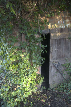 Old open door in wall with ivy. Stock Photo - 2403721