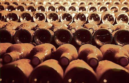 Wine cellar st emilion gironde aquitaine france.