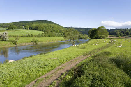english countryside: The valley of the river wye wales england border monmouthshire herefordshire uk.