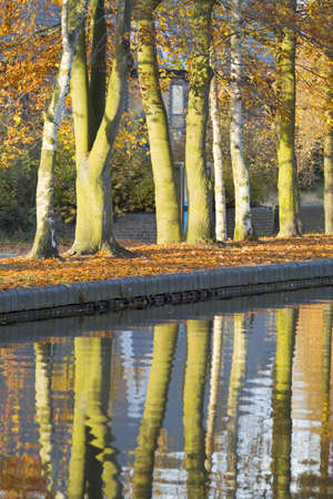 Trees in autumn leaf alongside a waterway.
