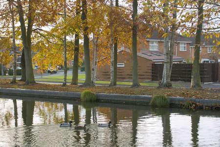 Trees in autumn leaf alongside a waterway. photo
