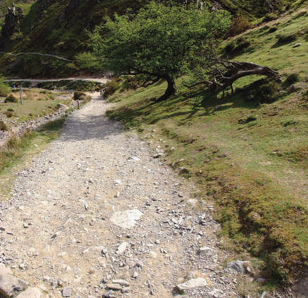 mill valley: A footpath the carding mill valley shropshire england uk