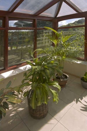 conservatories: A conservatory with tables chairs plants room in house next to garden