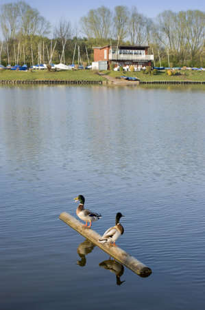 country park: redditch worcestershire midlands Inglaterra Reino Unido del parque del pa�s del lago del valle de la flecha