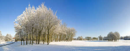 A snow covered rural landscape in the countryside Stock Photo - 2820173