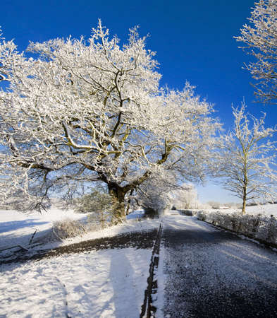deep freeze: Un paisaje rural cubierto de nieve en el campo