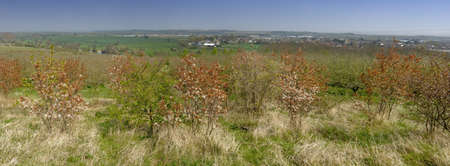 vale: rolnictwo w vale of evesham worcestershire Zdjęcie Seryjne