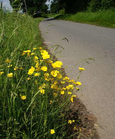 streifzug: Country Lane die Baddesley Clinton Estate Warwickshire Midlands England Vereinigtes K�nigreich
