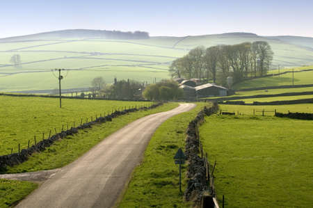 derbyshire: peak district landscape with fields and dry stone walls