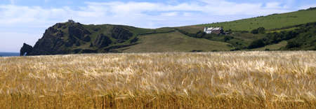 jamones: Vista desde el punto de prawle de ruta de la costa de sur oeste con devon al sur jamones devon Inglaterra uk