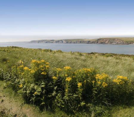 jamones: la ciudad tur�stica de Bigbury en el mar del sur jamones Devon England UK