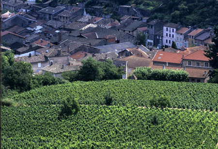 rhone: france rhone valley rhone beaujolais vineyards beaujeu Stock Photo