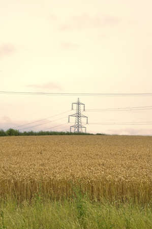 electricity supply: metal pylon carrying electricity supply power lines