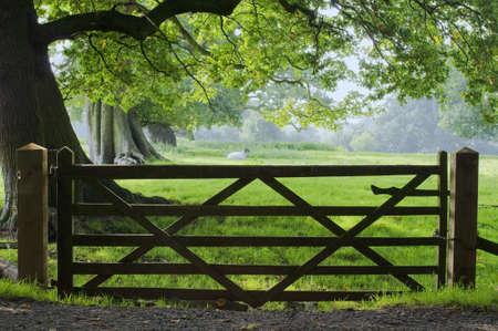typically english: gate
