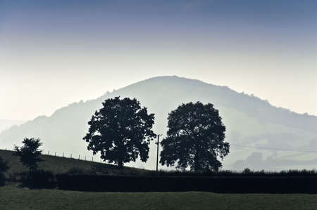 telegraph hill: brecon beacons national park landscape powys wales