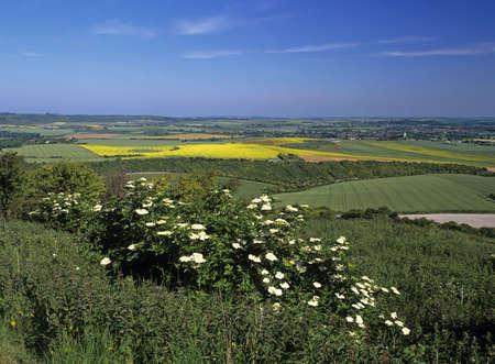 Buckinghamshire Chilterns Stock Photo - 3837502