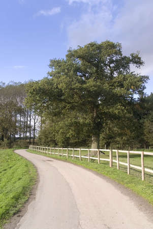 warwickshire: country lane umberslade warwickshire midlands england uk
