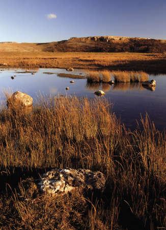 tarn: lake