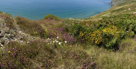 southwest: de klippen op bolberry naar beneden op de zuid west kust van Devon Coast Path het zuiden hammen Devon Engeland Verenigd Koninkrijk