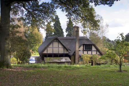 old english: autumn woodland at batsford arboretum the cotswolds gloucestershire midlands england uk Stock Photo