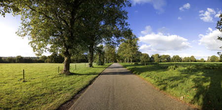 typically english: a road through a country estate